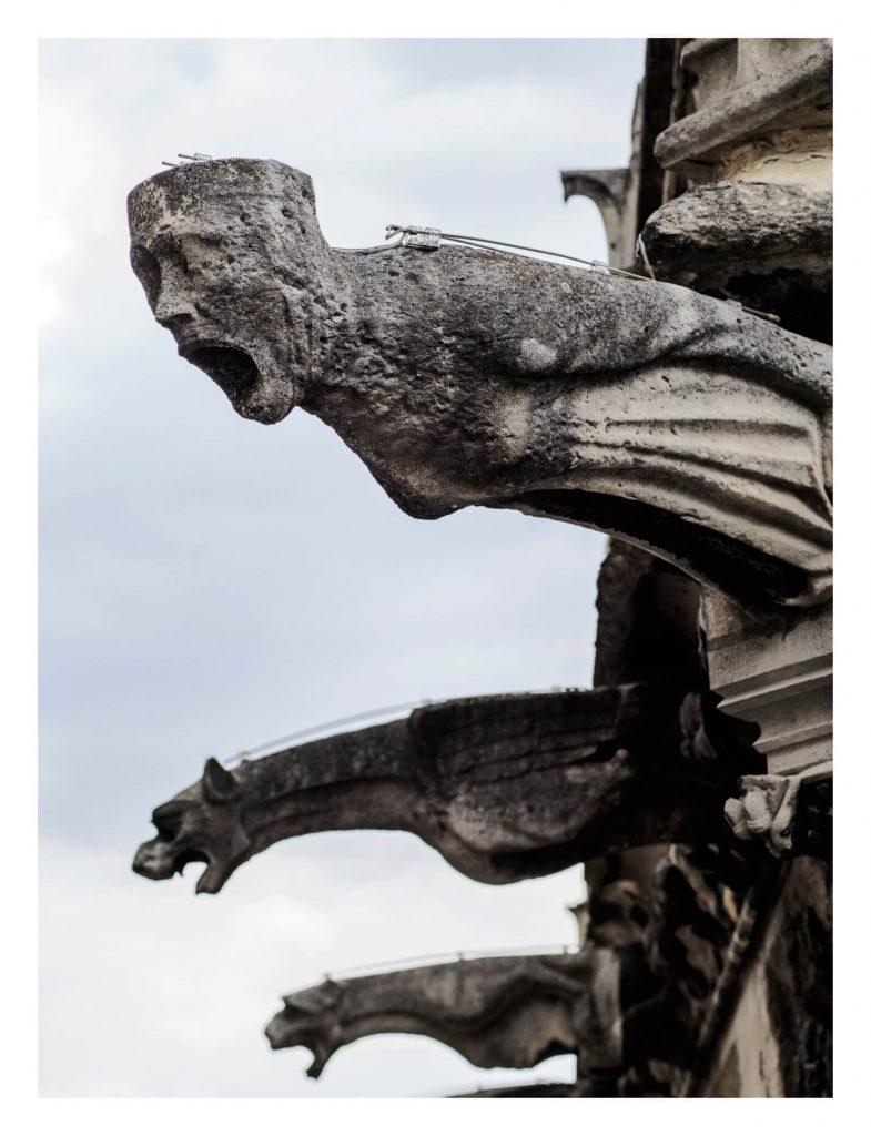 گارگویل های کلیسای نوتردام پاریس